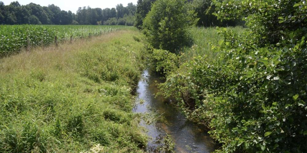 Förderprojekt der DBU zu konkurrierenden Grundwassernutzungen